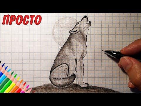 Как нарисовать ВОЛКА (Full HD) Рисунки для детей / How To Draw A Wolf