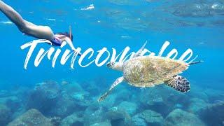 SRI LANKAS SCHNORCHEL-PARADIES ? | Trincomalee Sri Lanka