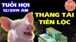 Khổ Tận Cam Lai Tuổi Hợi Tháng 12 Âm Lịch Vận May Đổi Đời, Lộc Tài Tăng Tiến, Đếm Tiền Mỏi Tay