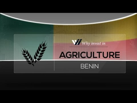Agriculture  Benin - Why invest in 2015