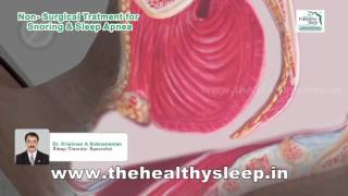 Snoring and Sleep Apnea Treatment in Kannur | Snoring Animation | Sleep Apnea Remedy Kerala, India
