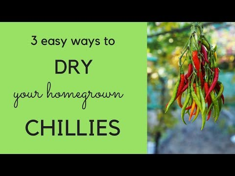 How to dry chillies – three easy ways