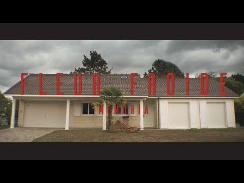 Youtube: Tayc – FLEUR FROIDE: Memoria