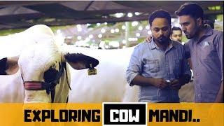 COW MANDI VLOG | BAKRA EID | THE IDIOTZ