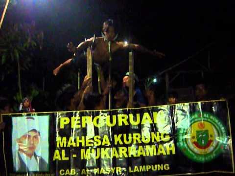Permainan Atraksi Perguruan Mk Lampung Al Hasyr (Apri Cs)