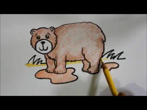 660 Koleksi Sketsa Gambar Hewan Beruang Gratis Terbaik