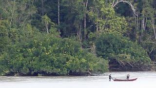 Amazon River Journey