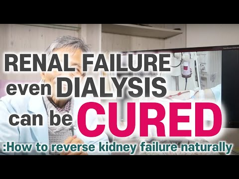 Natural treatment and diet for kidney failure