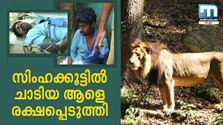 Man Jumps Into Lion's Enclosure In Thiruvananthapuram Zoo|Mathrubhuminews