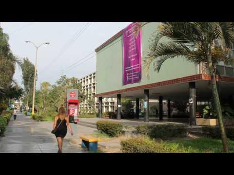 Universidad Nacional Mayor de San Marcos - Perú