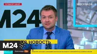 Требования по санитарной безопасности на транспорте могут утвердить до конца мая - Москва 24
