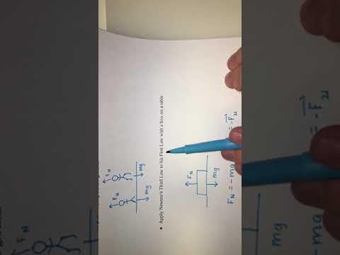 Newton's 3rd Law Activity