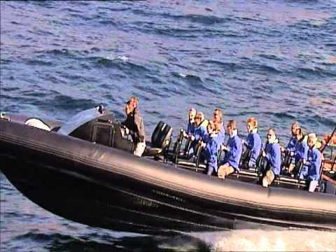 Ocean Extreme Bondi Bash Boat Ride - Sydney Harbour