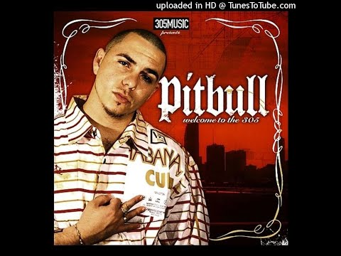 Pitbull Ft Lil Jon   305 Anthem