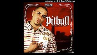 Pitbull Ft. Lil Jon  - 305 Anthem
