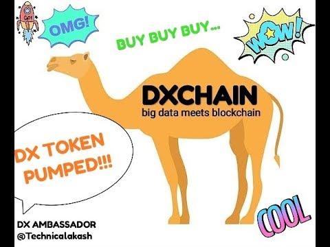 DxChain Token description