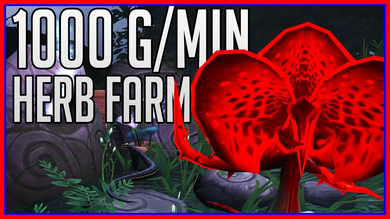 1000 Goldminute Dreamleaf Farming Guide Wow Gold Guide Youtube