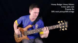 Comparison: Honey Badger Heavy Hitters & Delano SBC 6 HE/S bass guitar pickups