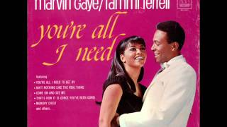 Marvin Gaye - Ain