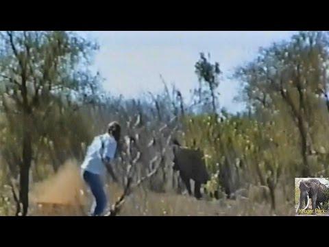 Biggest Kruger Park Idiot EVER. Idiot vs Rhino
