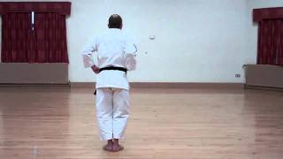Wado Karate Pinan Sandan performed by Neil Pottinger