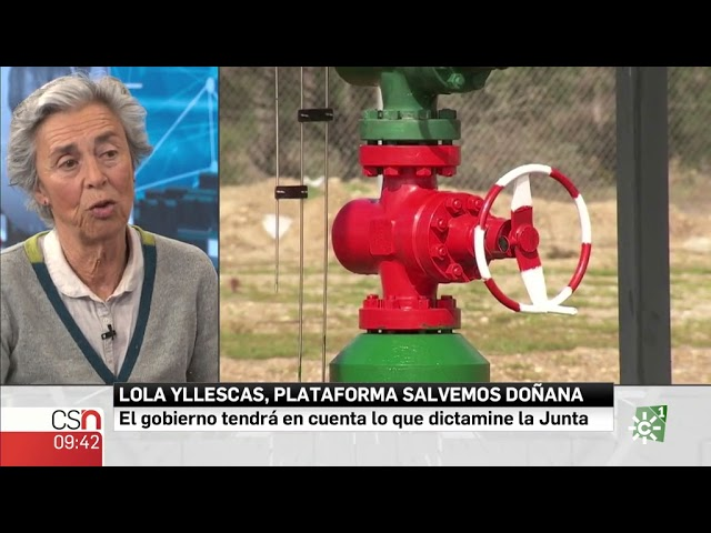 La entrevista   Lola Yllescas, Ecologistas en acción