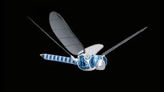 5 Amazing BIONIC ROBOTS by Festo Robotics #2