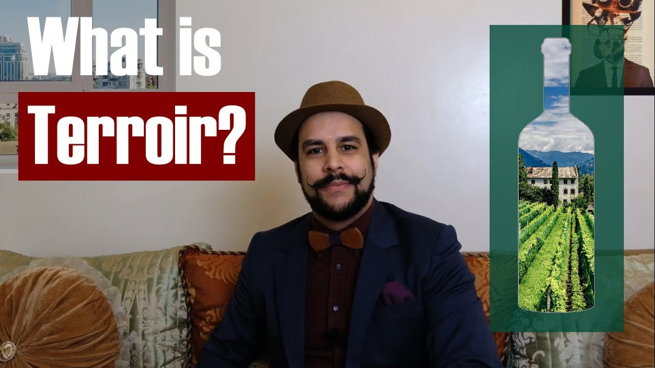 What is Terroir?