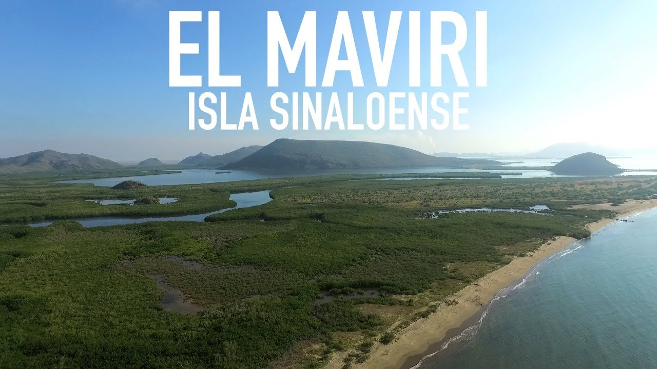 Image result for el maviri