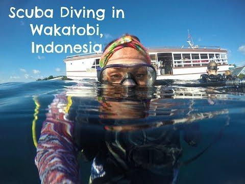 Scuba Diving in Wakatobi, Indonesia