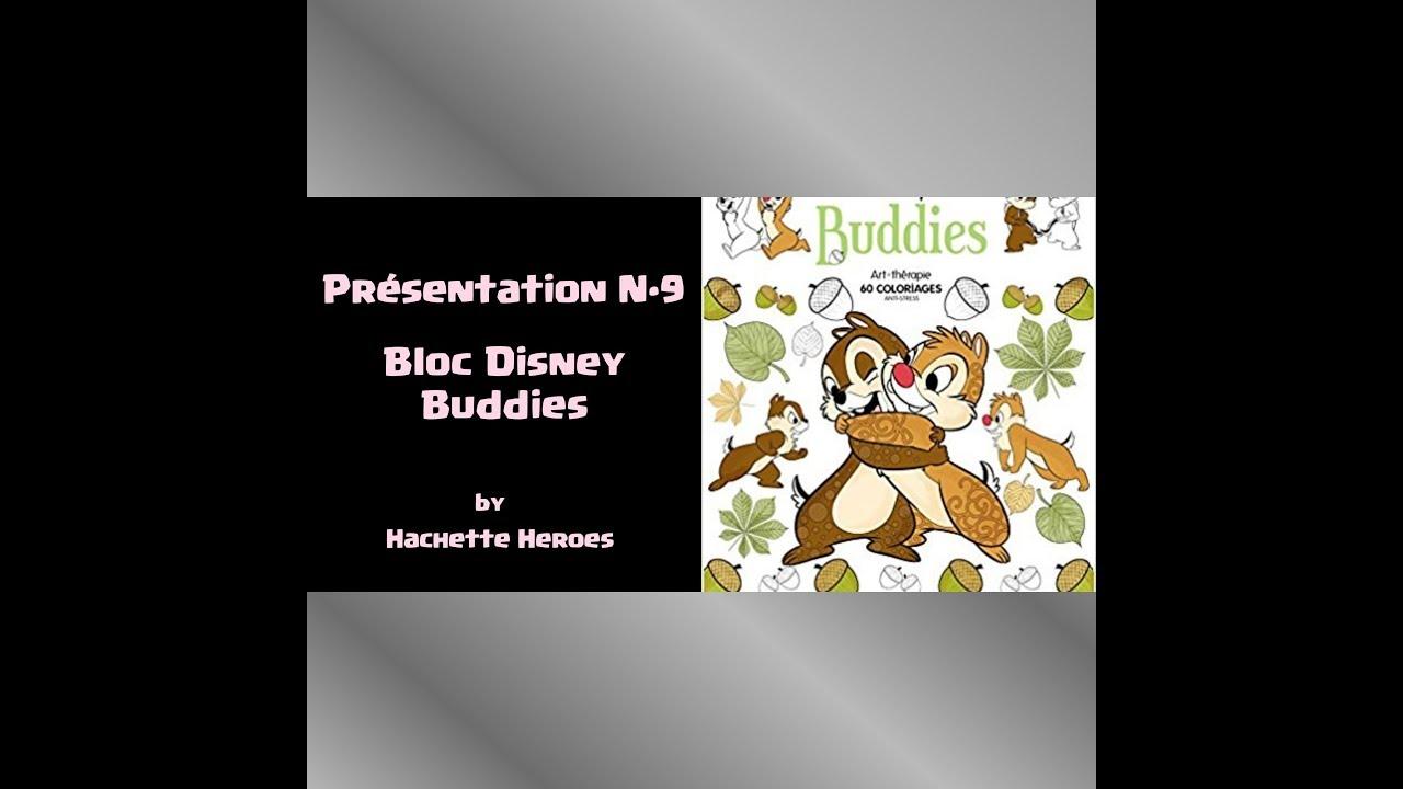 Présentation du livre - Bloc Buddies Disney - YouTube