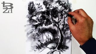 How to Draw Tress with Charcoal | Draw Landscape, Step by Step | Born2Draw