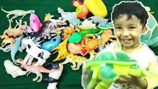Animals Toys Studio Learn Colors Learn Wild Zoo Animals names Toys for kids