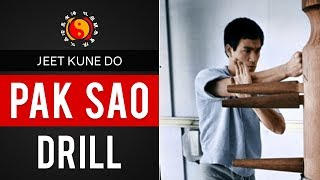 Bruce Lee's Jeet Kune Do Trapping Techniques - Pak Sao Drill