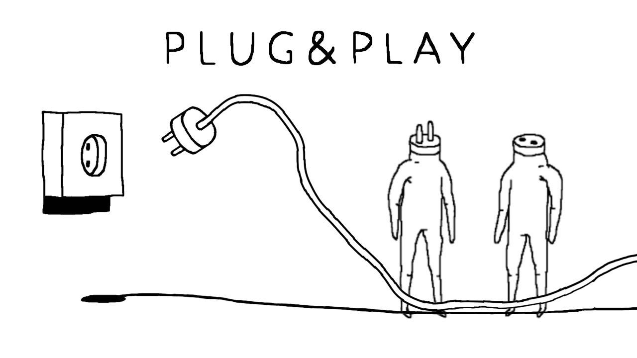 ce naiba se intampla   - plug and play