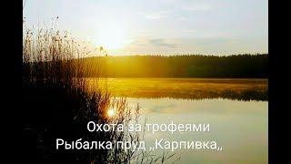 Рыбалка на платнике ,пруд с Дудковка, ,,Карпивка,, Харьковская область