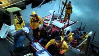 Port Isaac's Fisherman's Friends - Youngs seafood TV advert