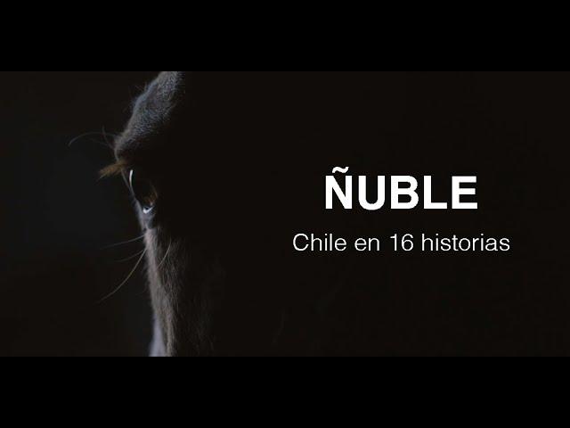Ñuble