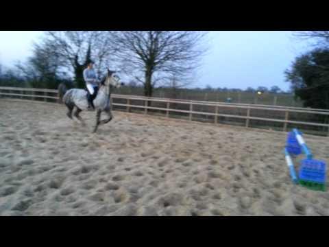 Dapple grey mare jumping