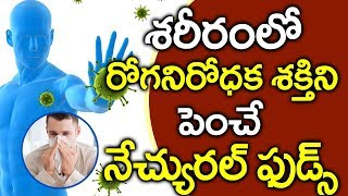 Boost Your Immunity with Natural Foods I Health Tips in Telugu I Good Health and More