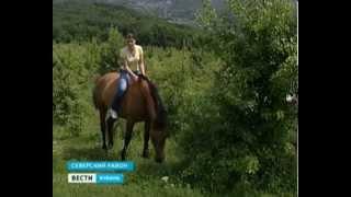 Кубанская семья уже больше восьми лет спасает лошадей от верной смерти