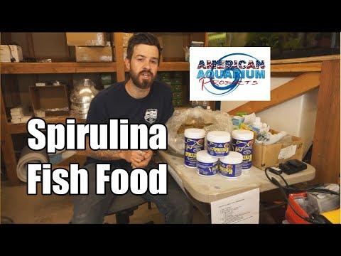 Spirulina Algae Fish Food | Zoo Med Spirulina 20 Review