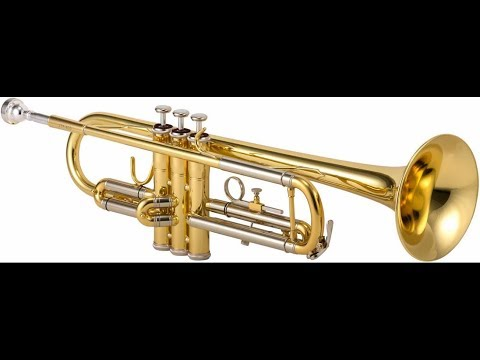 How to clean your trumpet (retard method)