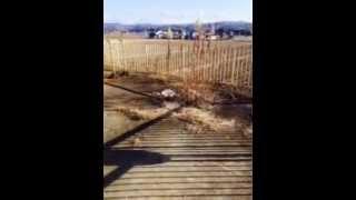 賃貸アパート管理草刈ビフォー&アフターの映像になりますが、埼玉県、...