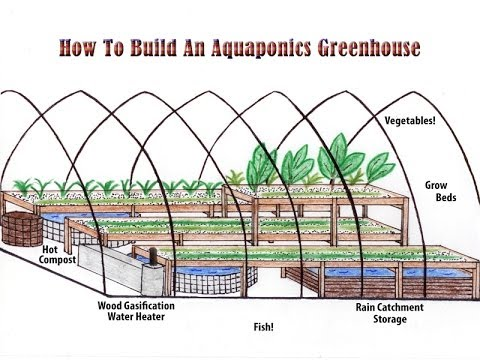 How to build an aquaponics greenhouse an aquaponics for How to make house green