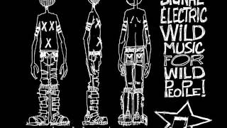 Signal Electrique - Love & Acid
