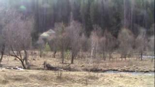 видео Недвижимость на Алтае