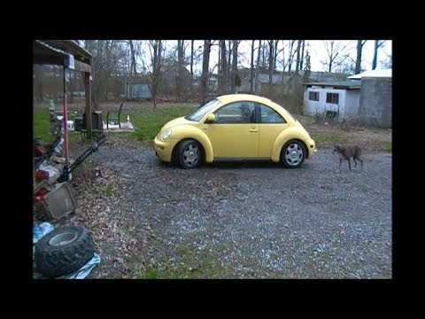 PawPaw Repairs the Dropped Window Problem in the 2000 VW Beetle