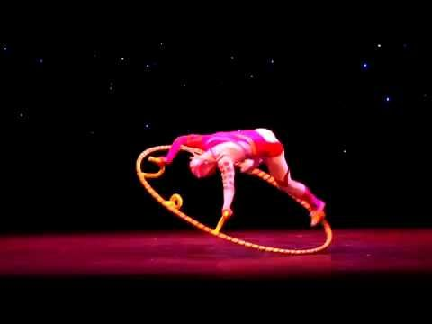 Golden Dragon Acrobats (4-minute Video Montage)