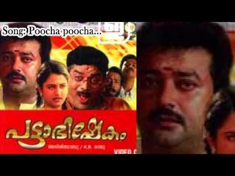 Poocha poocha - Pattabhishekam